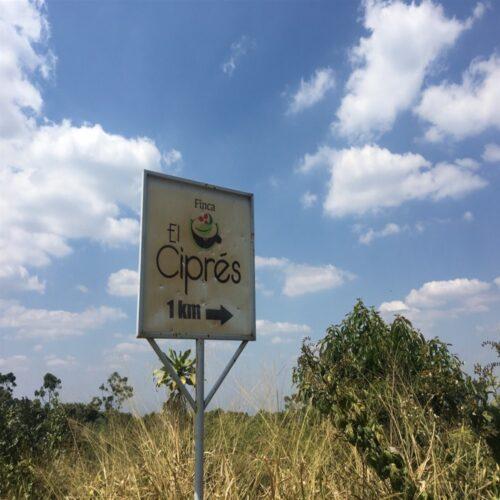 El Cipres estate in El Salvador